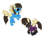 Wild Fire : Wonderbolt and Shadowbolt Versions by ShadyHorseman