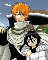Bleach: Ichigo and Rukia by himeko