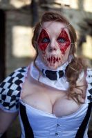 harlequin 5 by twigstock