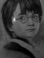 harry potter by ZeorosKiza
