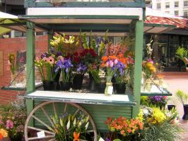 Flowershoppe by green-haiku