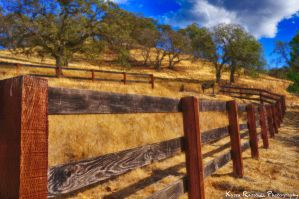 Country Side Fence by KasraRassouli