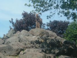 """""""I'm on top of the world"""" by jenlirette"""