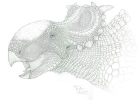 freaky scales - Pachyrhinosaurus canadensis by FabrizioDeRossi