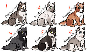 Adopts 11 (#2 is 5Points !) by AxesAdopts