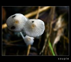 couple by dhuo