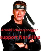 A.S. supports NaruHina by 777luck777