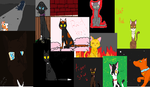 lot of warrior cats by whiteheartwarrior