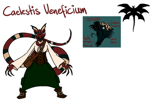Character Sheet: Caelestis Veneficium by WitchyStella