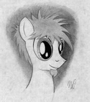 Newsworthy Headshot by drawponies