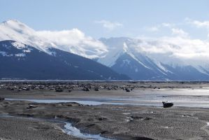 Alaska Beach 9 by prints-of-stock