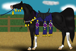 In-Hand Native Costume: Zafira by WildOracle