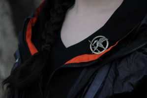 The Mockingjay by moonflower-lights
