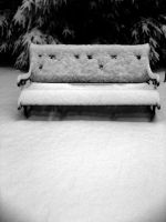 Snowy Expectance by Maang