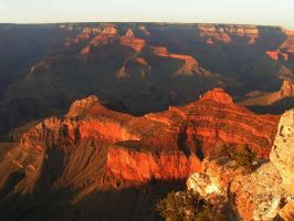 The Grand Canyon at Sunset by metalissa