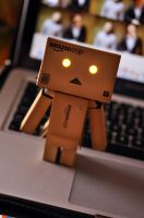 Danbo is here! by nikicorny