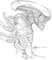 Xenomorph profile by ChrisOzFulton