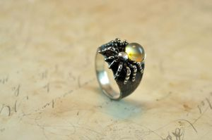 Spider silver ring by GatoJewel-DerKater