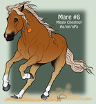 Mustang Mare Adoption 8 by JNFerrigno