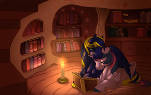 Commission: Quiet Night by KittehKatBar