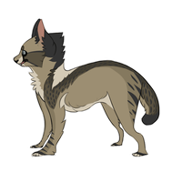 Cat Adopt [Paypal/Point Design Auction - CLOSED] by Specktres