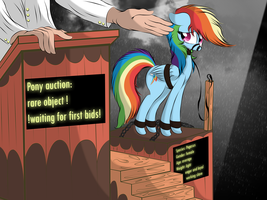 The price for dashie by V-D-K