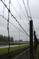 Barbed Wire in Dachau by Kosumosu