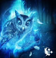 Magical Owl by Celairen