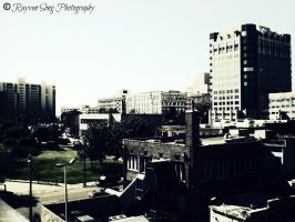 Looking Over Memphis by RayvenSongPhoto