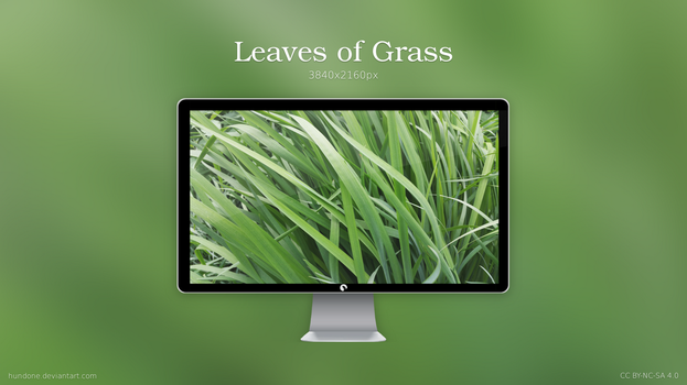 Leaves of Grass by hundone