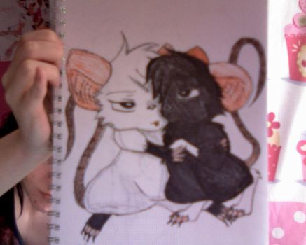 Rat Pic Photo2 by atilfunami