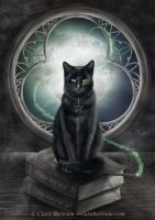 A Familiar Cat by CLB-Raveneye