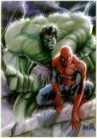 hulk-spidey by gammaknight