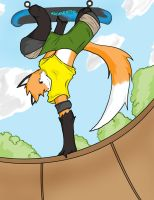 sk8ter fox final by ArcaneWind