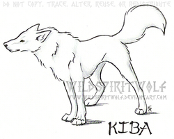 Kiba by WildSpiritWolf