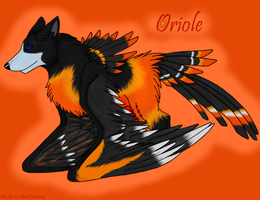 Oriole Ref Sheet by paradox--division