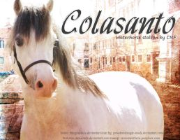 Colasanto by CrowsNestPhotography