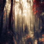 lost in the silence by ildiko-neer