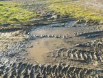 Muddy Tracks by Chiixil-84