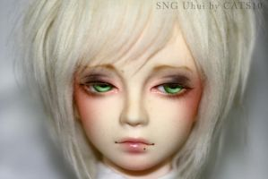 Face up: SNG Uhui by cats10