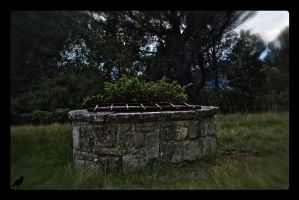 Old well. by jennystokes