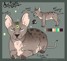Sphynx Adopt AUCTION by Kenny-BS