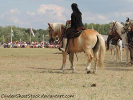 Hungarian Festival Stock 065 by CinderGhostStock