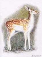 Bambi by AnnaShell