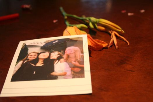 polaroid+flower at Borders by mylifeinsnapshots