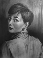 Audrey Hepburn Charcoal Drawing by stevegoad