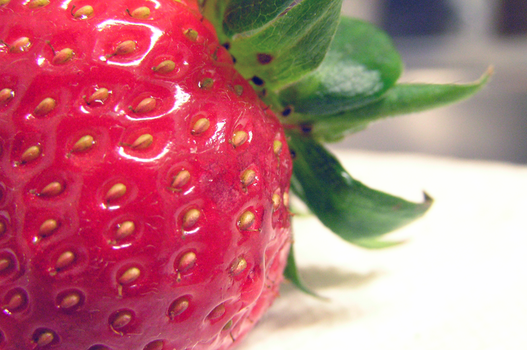 Strawberry up-close by CarcinogenCrush