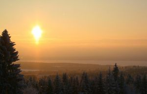 Northern Winter Sun by xuvi