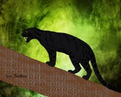 Black clouded leopard by Lena-Panthera