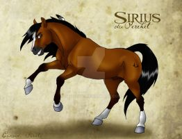 Sirius Reference by abosz007